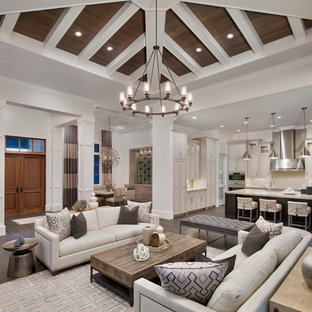 Best 100 Transitional Living Room Ideas & Remodeling Photos | Houzz
