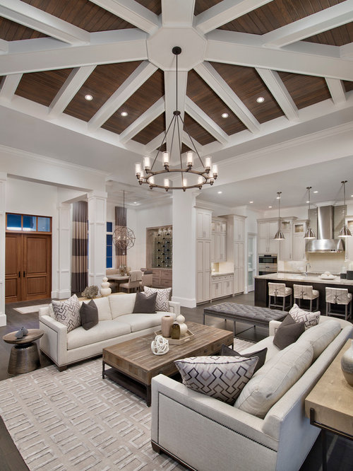 pictures of designer living rooms transitional living room design ideas remodels amp photos 23751