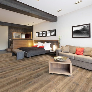 Foto de salón moderno con suelo de madera en tonos medios