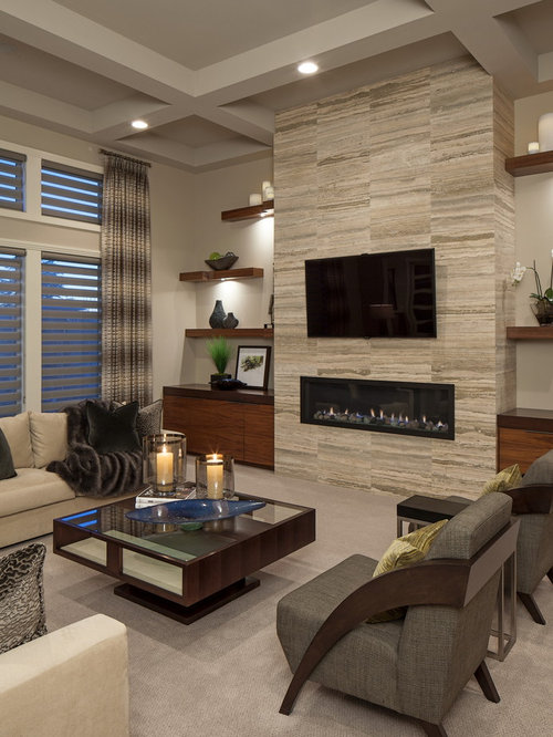 Example Of A Trendy Formal Carpeted Living Room Design In Omaha With Ribbon Fireplace