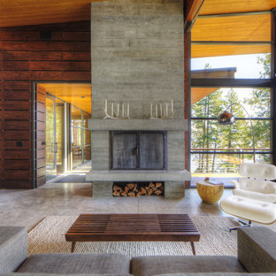 Minimalist living room photo in Seattle with a concrete fireplace