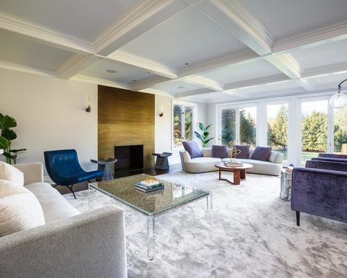 Contemporary Fireplace Ideas | Houzz