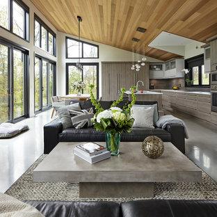 Imagen de salón abierto, contemporáneo, grande, con paredes blancas, suelo de cemento y suelo gris
