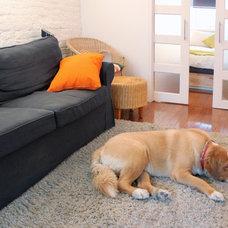 Transitional Living Room by Laura Garner