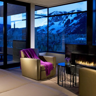 Idee per un piccolo soggiorno minimal chiuso con sala formale, pareti marroni, moquette, camino classico, cornice del camino in pietra e parete attrezzata