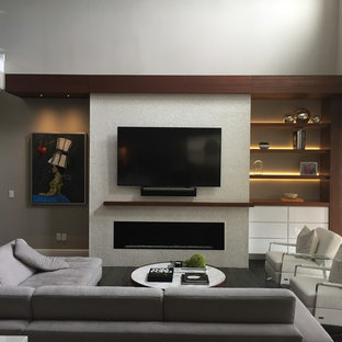 Contemporary Fireplace and Media Center