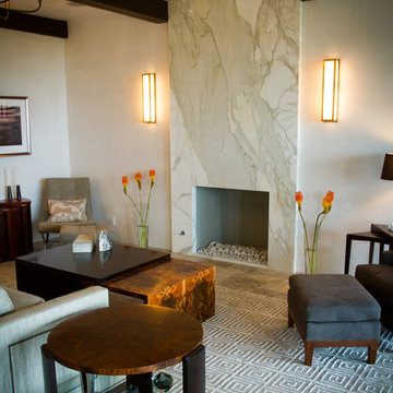 Contemporary Fireplaces