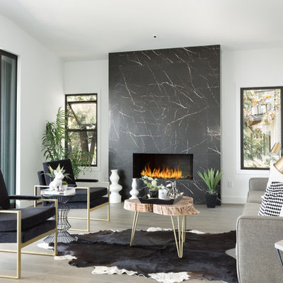 Example of a trendy formal living room design in Los Angeles with white walls, a stone fireplace, no tv and a ribbon fireplace