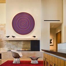 Contemporary Living Room by Elizabeth A Rosensteel Design Studio