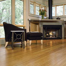 Contemporary Living Room Bamboo Floors