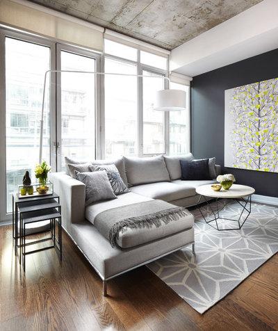 Contemporáneo Salón Contemporary Living Room