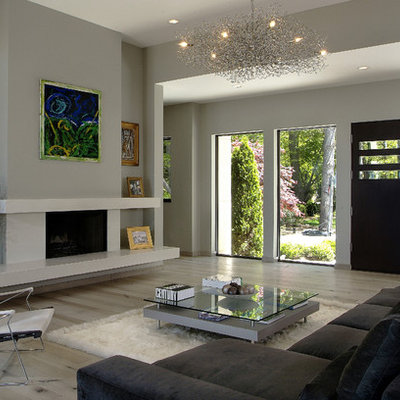 Large trendy light wood floor living room photo in Grand Rapids with gray walls, a standard fireplace and a concrete fireplace