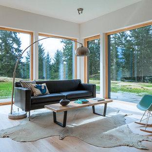 Modernes Wohnzimmer mit weißer Wandfarbe und hellem Holzboden in Seattle