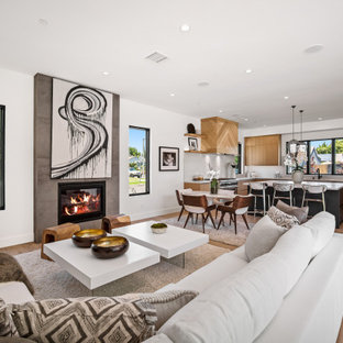 75 Beautiful Contemporary Living Room With A Standard ...