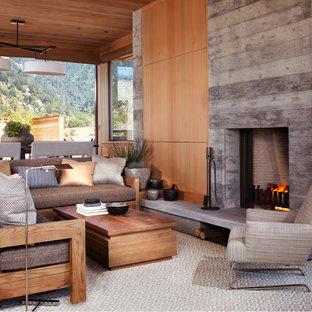 サンフランシスコの小さいビーチスタイルのおしゃれなLDK (標準型暖炉、コンクリートの暖炉まわり) の写真
