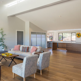 Example of a huge trendy open concept medium tone wood floor living room design in San Diego with white walls, a hanging fireplace and a plaster fireplace