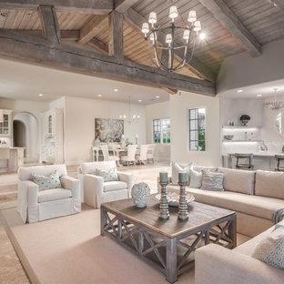 Cooler Color Palette in a Luxury Living Room Design