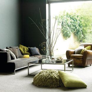 Foto di un soggiorno minimal aperto con moquette e pavimento grigio
