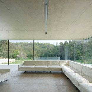 Immagine di un soggiorno minimalista con pavimento in cemento