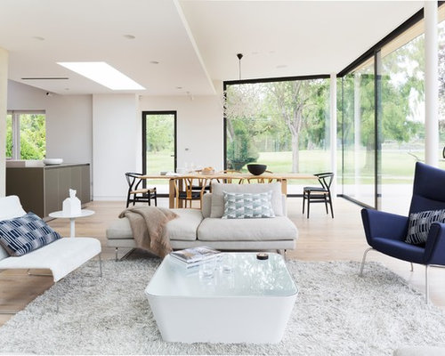 Best Modern Comfortable Living Room Design Ideas Remodel Pictures Houzz
