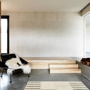 メルボルンの中サイズのコンテンポラリースタイルのおしゃれな独立型リビング (フォーマル、白い壁、コンクリートの床、標準型暖炉、金属の暖炉まわり、内蔵型テレビ) の写真