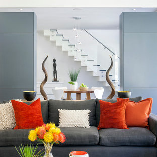 Couch Pillows Houzz
