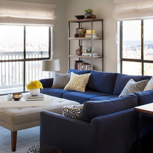 Inspiration for a medium sized contemporary enclosed living room in San Francisco with grey walls.