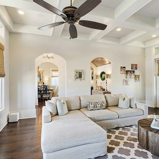Transitional living room photo in New Orleans