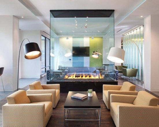 Glass Fireplace Houzz