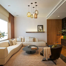 Contemporary Living Room by Niche Modern