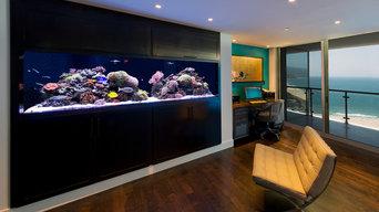 Custom in-wall living reef installation