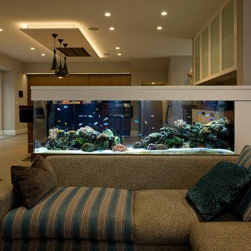 Custom room divider living reef aquarium