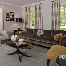Transitional Living Room by Shelter Interiors llc