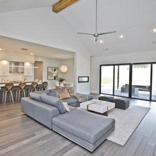 Immagine di un grande soggiorno minimal aperto con sala formale, pareti bianche, camino bifacciale, cornice del camino in metallo, TV autoportante, pavimento grigio e pavimento in vinile