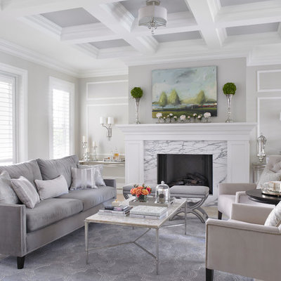 Living room - traditional formal living room idea in Miami with gray walls, a standard fireplace, a stone fireplace and no tv