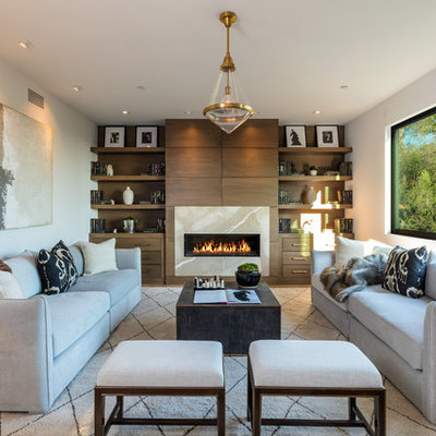 Inspiration for a contemporary medium tone wood floor and brown floor living room remodel in Los Angeles with white walls, a ribbon fireplace and a stone fireplace