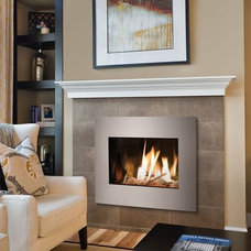 Traditional Living Room by Jackson Fireplace and Patio, inc