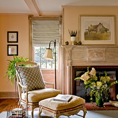 traditional living room by ECOterior Solutions