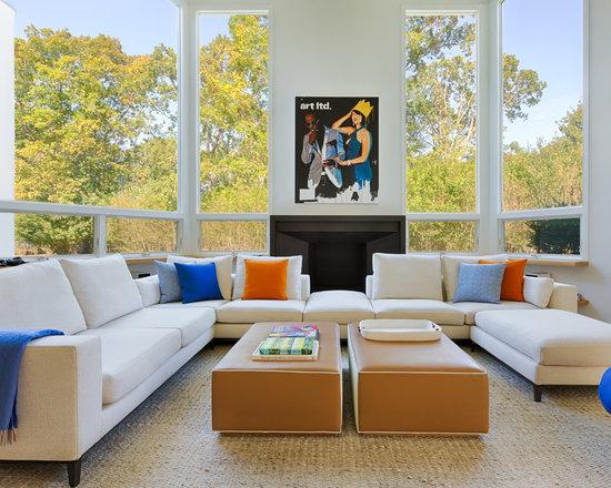 Living Room Carpet Ideas Houzz - Carpet ideas for living room