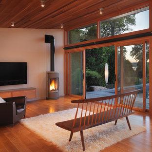Foto di un piccolo soggiorno minimalista chiuso con TV a parete, pareti bianche, pavimento in legno massello medio, cornice del camino in pietra e stufa a legna
