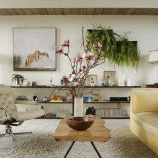 Midcentury Living Room Eclectic Eichler living room