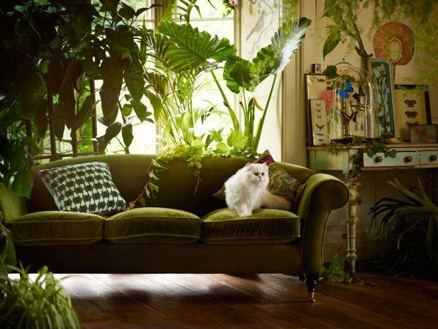 Eklektisch Wohnbereich Eclectic Living Room