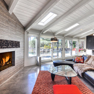 75 Most Popular Midcentury Modern Living Space Design