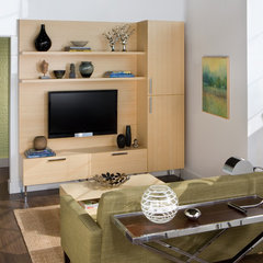 modern living room by transFORM | The Art of Custom Storage