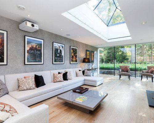 Large skylight houzz for Large skylight