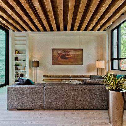 Contemporary Home Exposed Beams Design Ideas, Pictures, Remodel ...