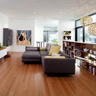 Ispirazione per un soggiorno minimalista con TV autoportante