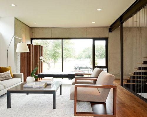 Modern living room design ideas remodels photos houzz - Houzz salones ...