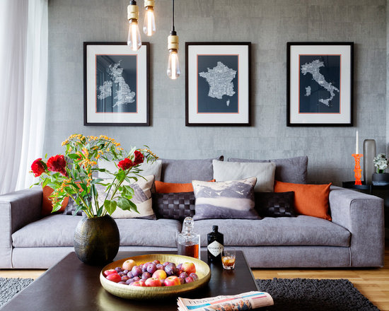 Living Room Design Ideas Single Man single man living room design ideas, remodels & photos | houzz