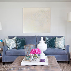 Transitional Living Room by Emily Ruddo